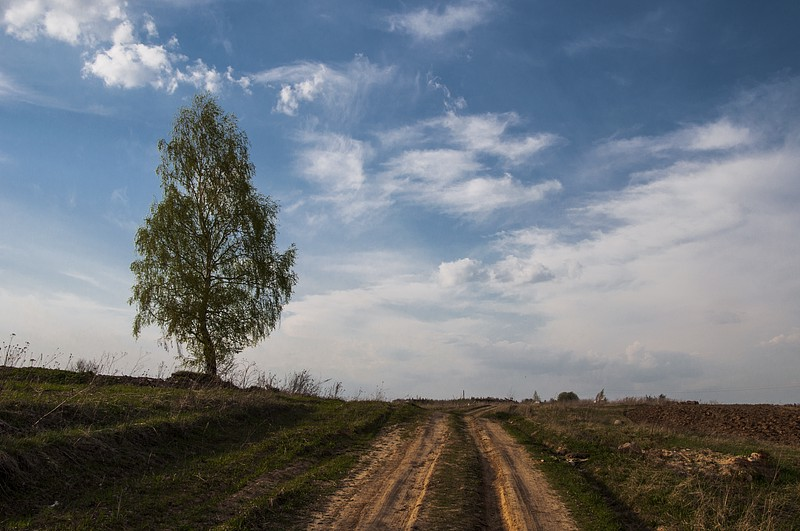Сунгурово, Костромская область, церковь, река Волга, лето, родственники, шашлыки, воспоминания, родина