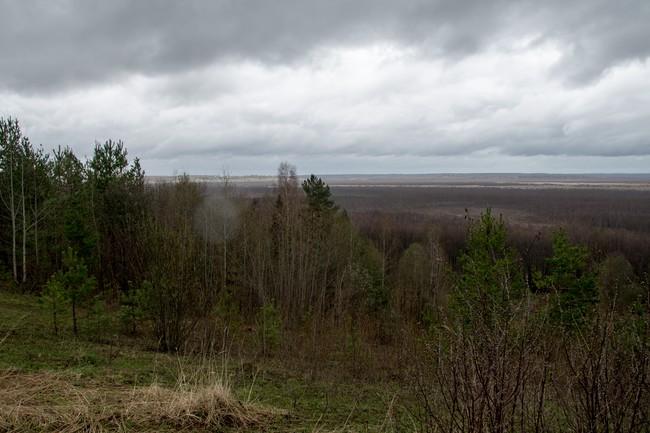 Внизу простирается Исуповское болото.