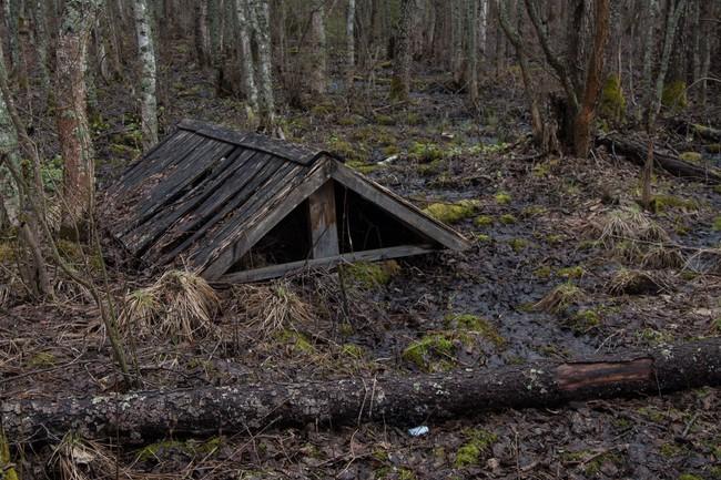 Старая крыша колодца.