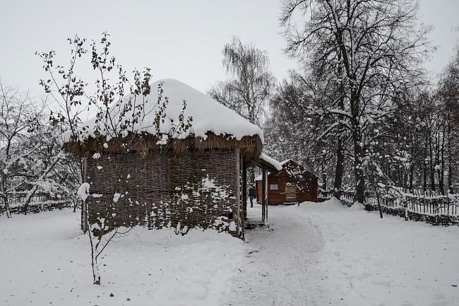 Дом Есениных. Сад.